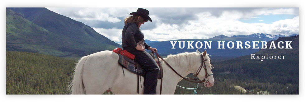 Yukon Horseback Explorer Package